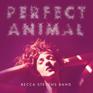 becca-stevens-band-perfect-animal
